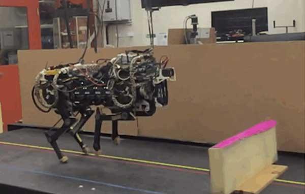 Amazing world of robotics-Animal robots